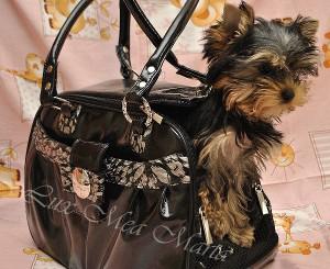 щенок йорка в сумке переноске